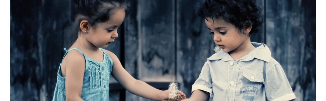 Официальная экспертиза на установление родства между  братом и сестрой