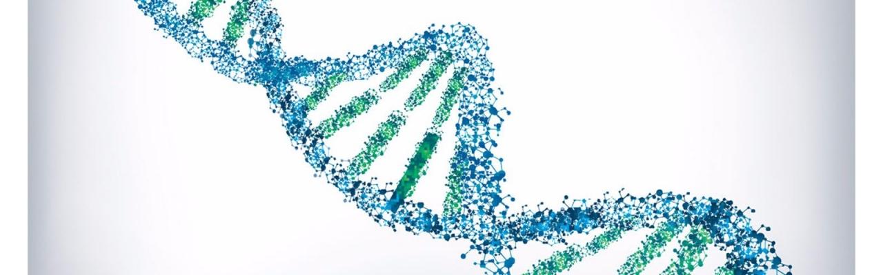 Официальный Профиль ДНК.