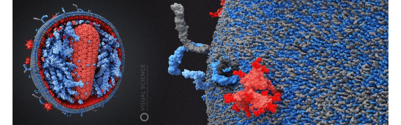 ДНК-тест на устойчивость к ВИЧ